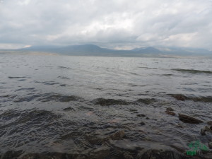Paravani lake - Samtskhe-Javakheti