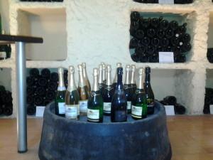 Bagrationi Wine tour in Tbilisi