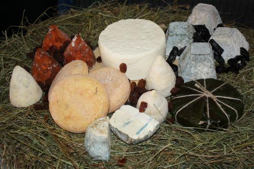 Фестиваль сыра в Тбилиси