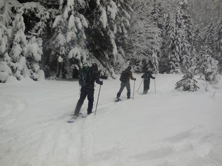Зима в Боржоми
