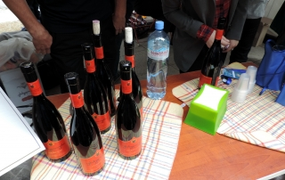 New Wine Festival 2015