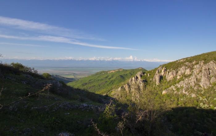 Artsivi gorge Vashlovani
