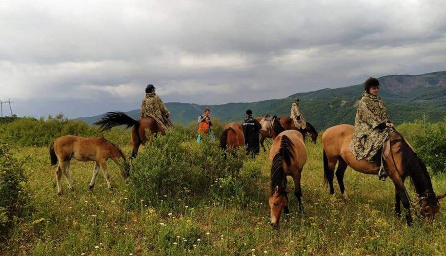 horse riding tour near Tbilisi